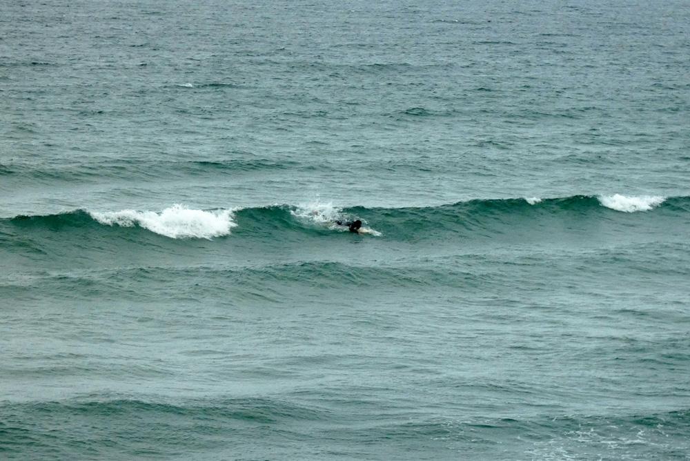 Houle en Hausse vent SO modéré ça surf !